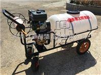 蓬莱市背负式汽油二冲程喷雾器 高压汽油四冲程喷药机 手推式喷雾机