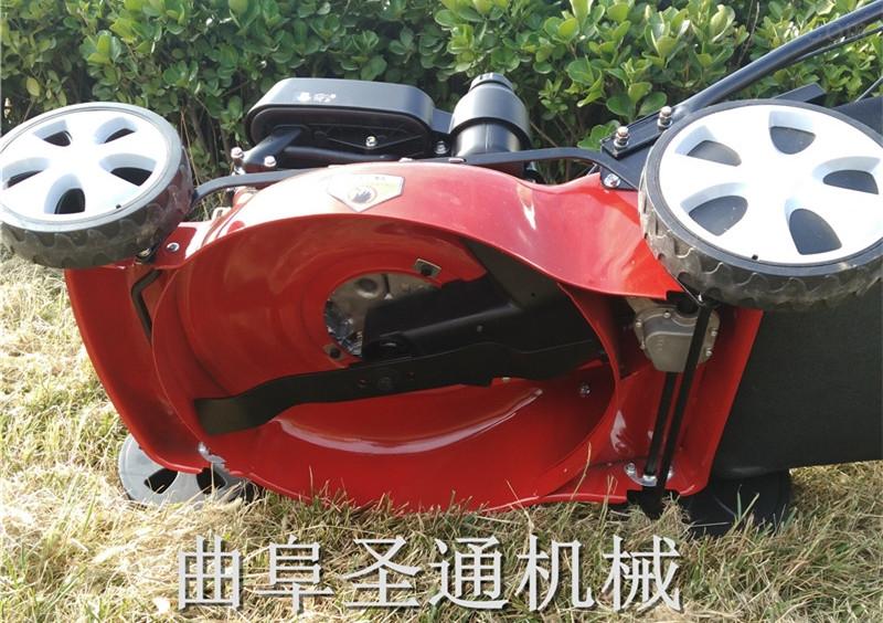 轻便式步行环境绿化草坪机 优质多档位调节割草机
