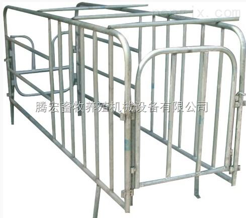 供应母猪定位栏 限位栏 单体栏 复合板定位栏