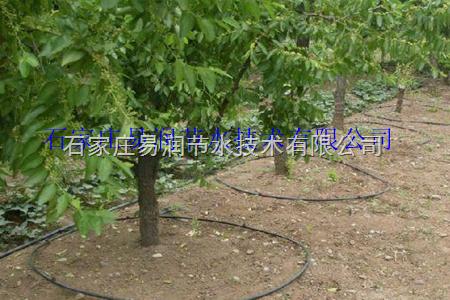 广西钦州直销小管出流施肥罐过滤器设备