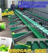 凯祥青枣分选机,国内*选果机的厂家