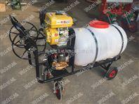 手推式汽油高压喷雾器 汽油杀虫打药喷雾器