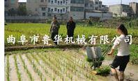 手摇式水稻插秧机 农用机械 插苗整齐效率高