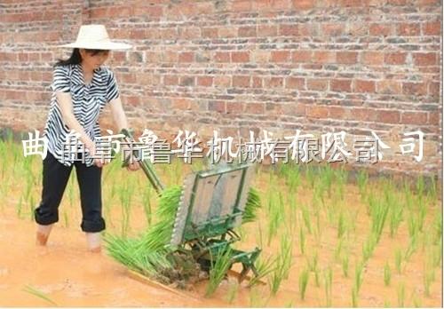新型两行手摇插水稻机 水稻插秧机 手动插秧机价格