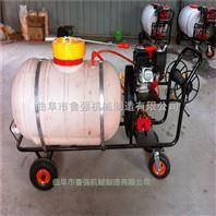 果蔬喷药喷雾机 小型汽油喷雾器 生产推车式喷雾器