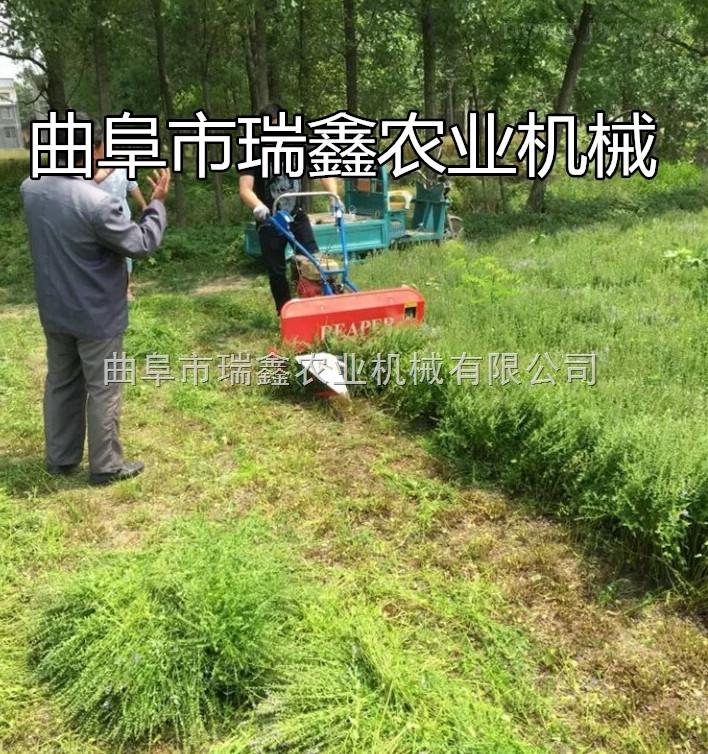 芦苇柳条收割机视频 水稻手扶式收割机 小型药材割晒机