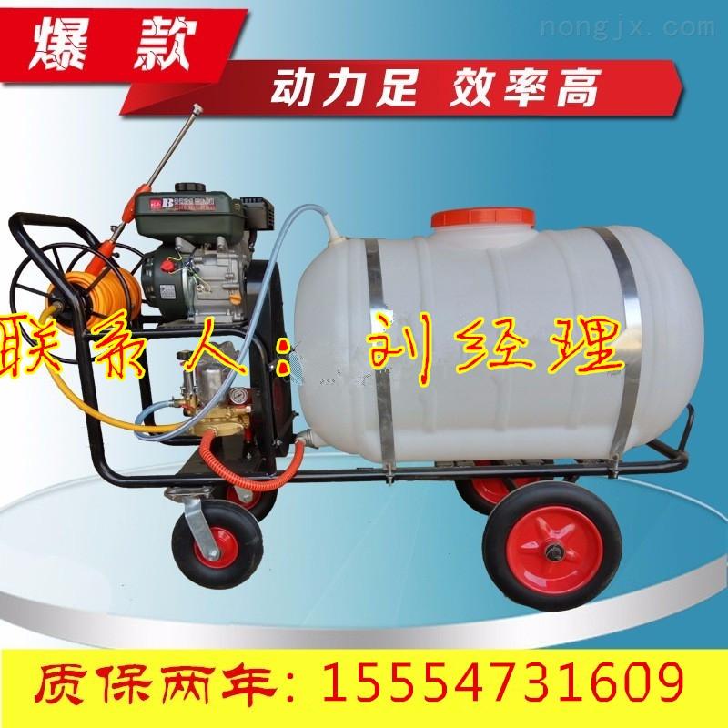 家用型手推式汽油打药机 植保用高压新型打药机  农田水稻喷药机