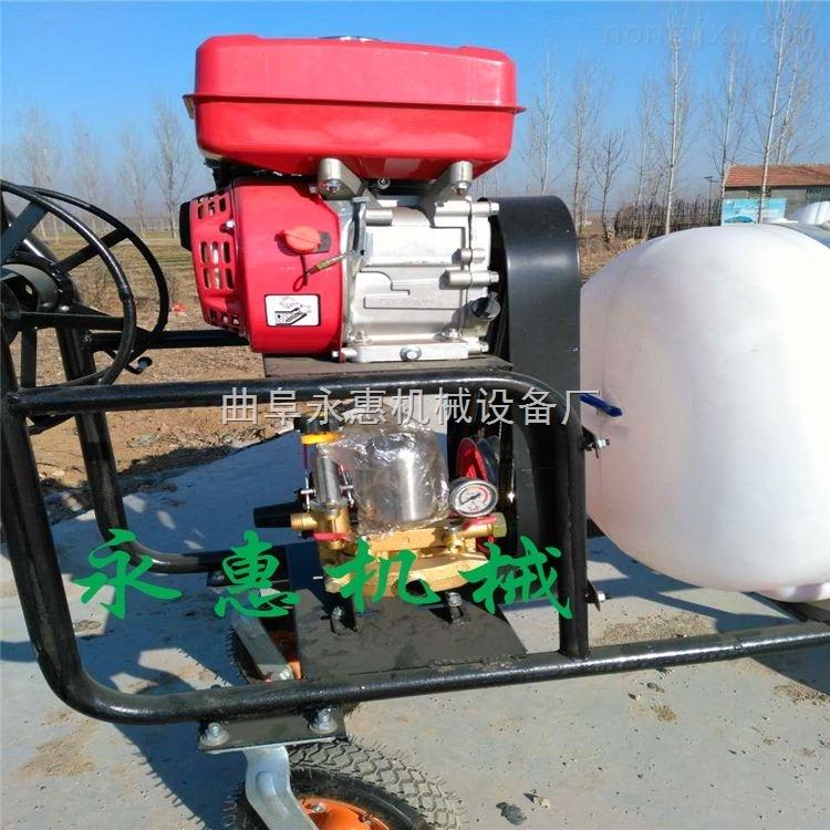 手推式汽油动力消毒打药机 压力可调果园喷药机