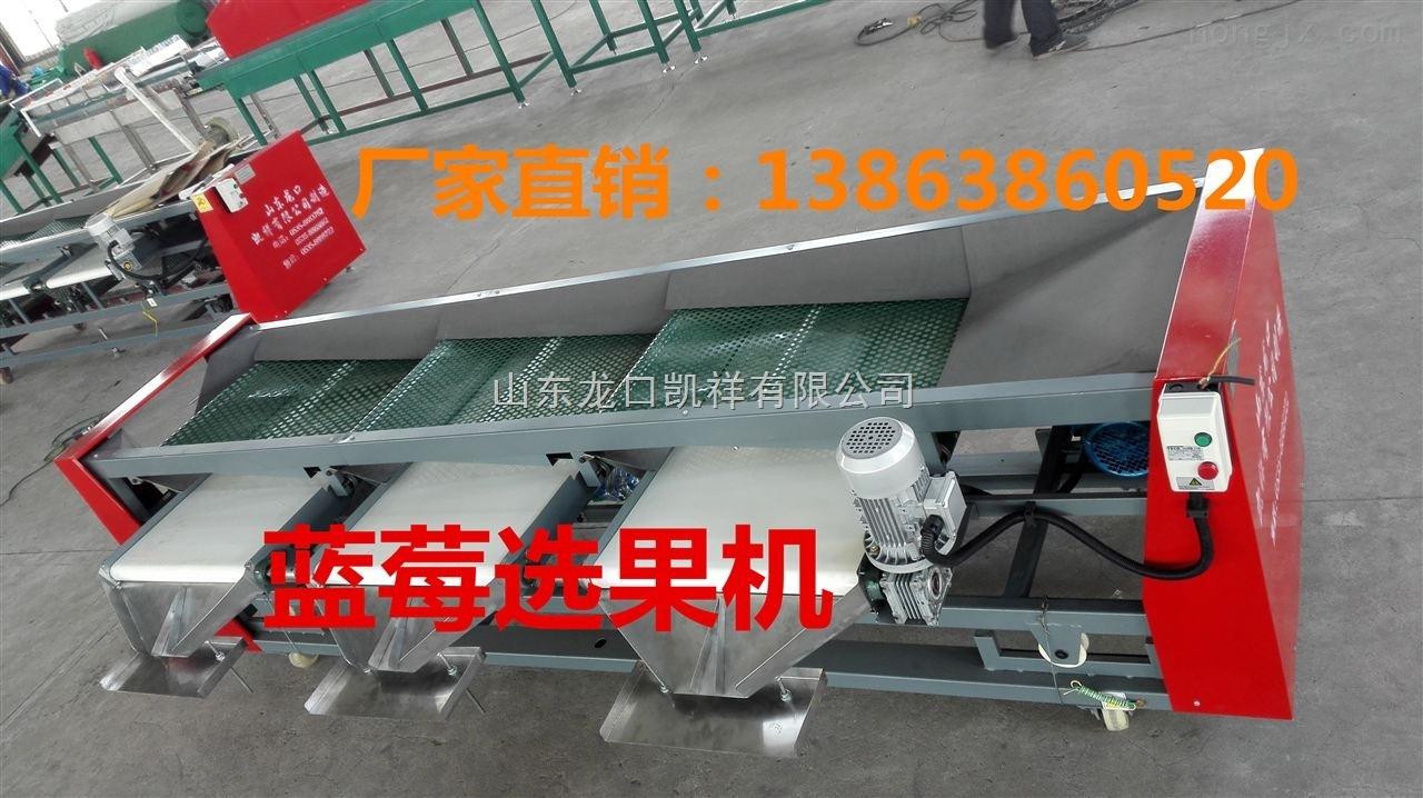 XGJ-LM-2017蓝莓选果机报价