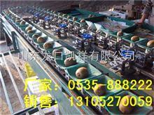 XGJ-SZZ四川猕猴桃选果机--分选机--全自动猕猴桃分选设备