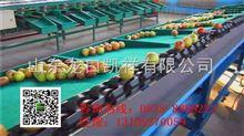 XGJ-PG苹果分拣机-山东辽宁甘肃分拣苹果大小的机器出售