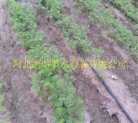 山西滴灌带保证质量 滴灌厂家十分抢手