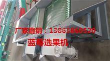 XGJ-LM三代新型型蓝莓分选机国内*先进型号