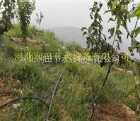 晋州市水肥一体化果树滴灌 小管出流