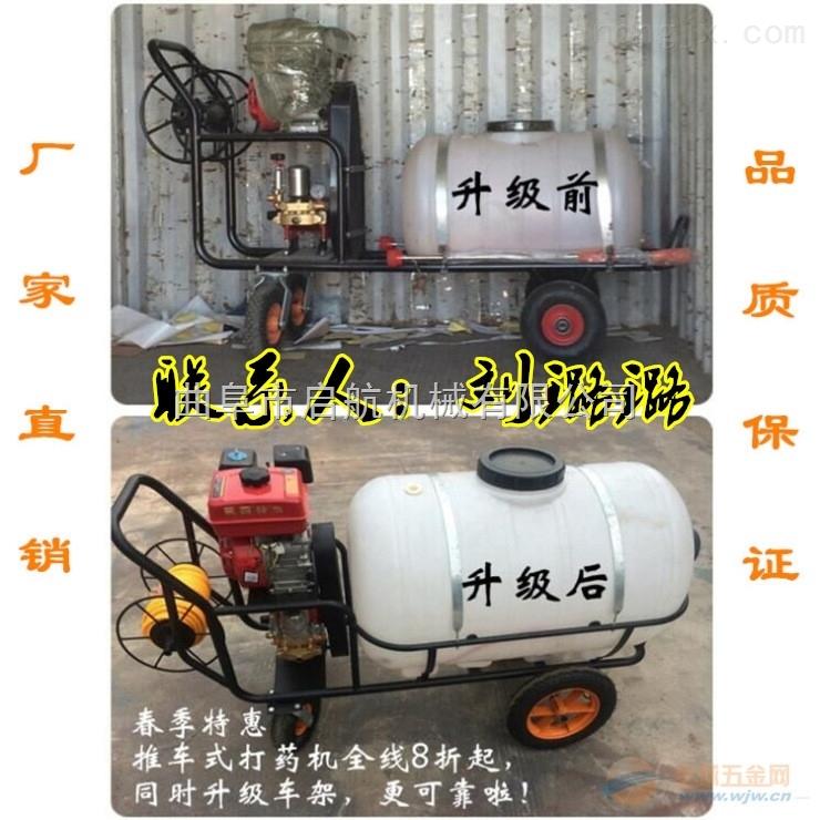 家用小型园林树木喷药机 手推式高压喷雾器 农用汽油打药机