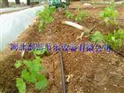 多种膜下滴灌生产商-河北膜下滴灌管