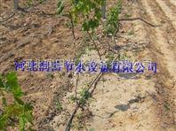 滴灌厂家|陕西滴灌管生产安装集一体
