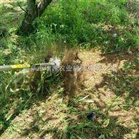 园林背负式除草机 蔬菜大棚除草机 苗圃打草翻土机