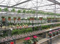 广东滴箭产品相关介绍 花卉滴灌