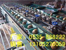 XGJ-SZZ猕猴桃分级机作用-供应大猕猴桃选果设备
