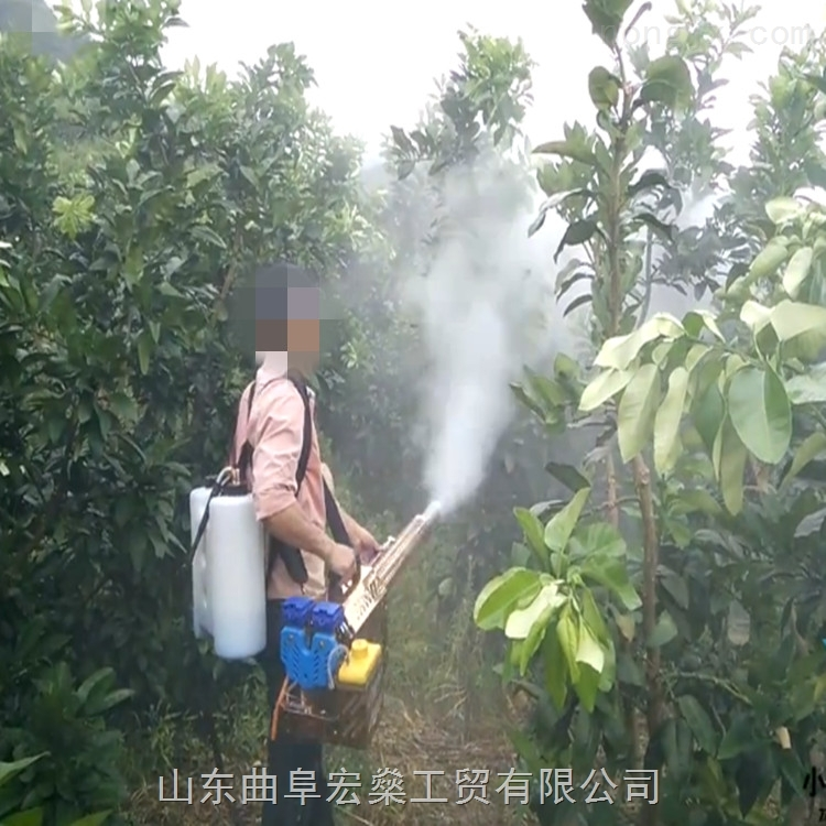 HS-动力超强防虫害小型弥雾机 瓜果蔬菜打药喷雾机