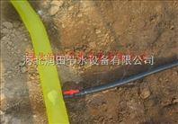 桃树灌溉微喷带 河南洛阳多孔软带批发零售