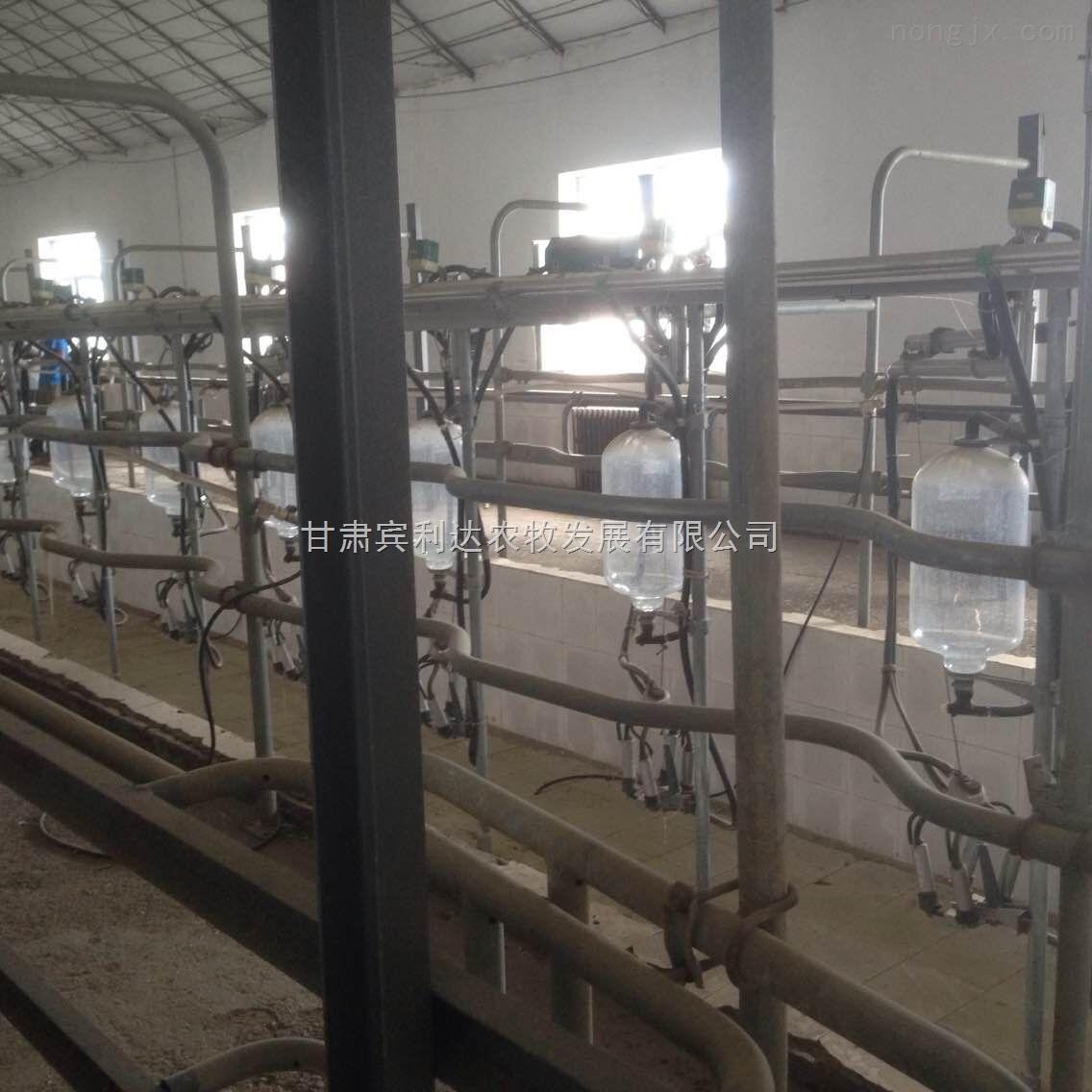甘肃张掖鱼骨式挤奶机甘肃宾利达厂家直销