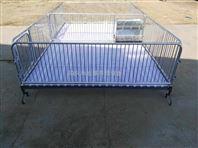 南宁养猪设备高培保育床小猪育肥双体栏厂家供应