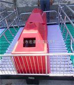 湖南养猪设备厂家供应产栏双体母猪产床