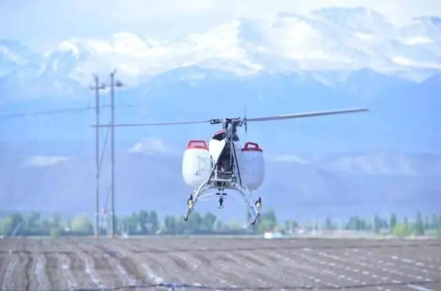 小麦除草剂无人机喷药药效试验:汉和水星一号显身手