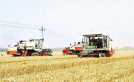 焦俊生:农机补贴战线的圣莲