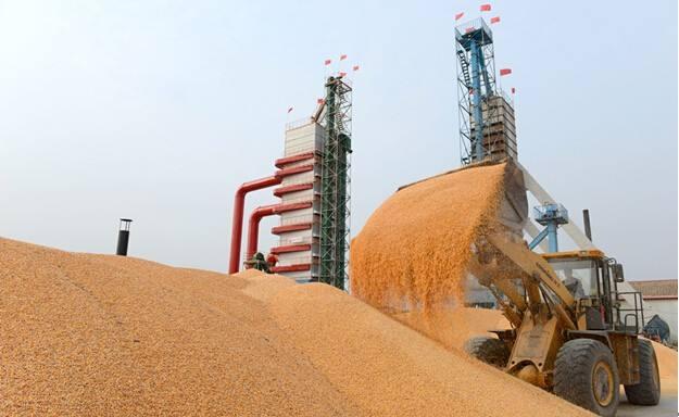 上海青浦:预投资7200万 建7大粮食烘干中心